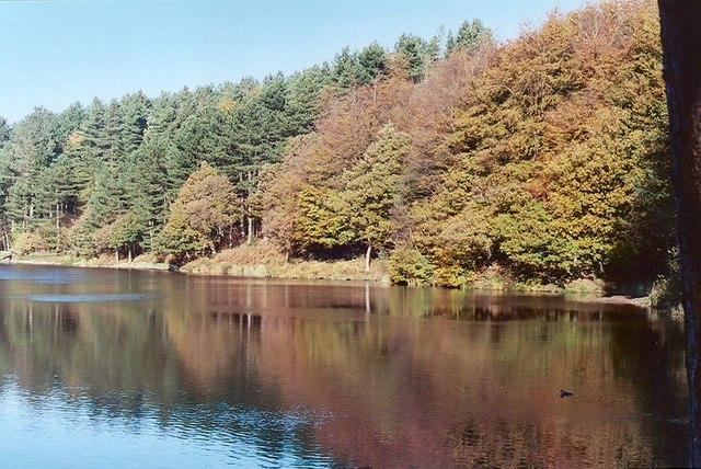 Autumn view at Roddlesworth Reservoir