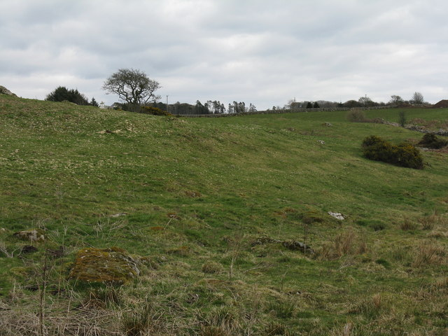 Pasture near Auchenhay