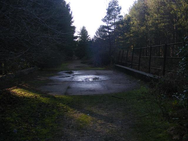 Waveney Forest, Fritton