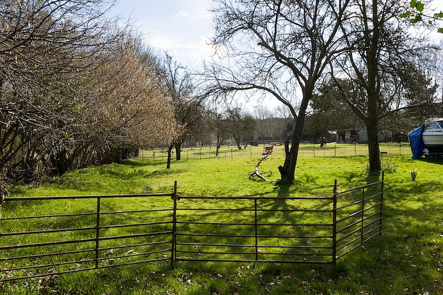 Smallholding with goats, Buttons Lane, West Wellow