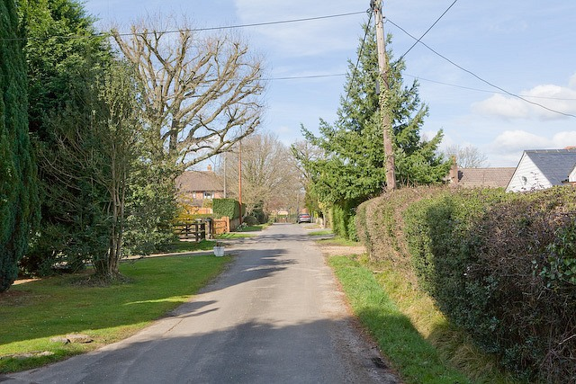 The Drove, West Wellow