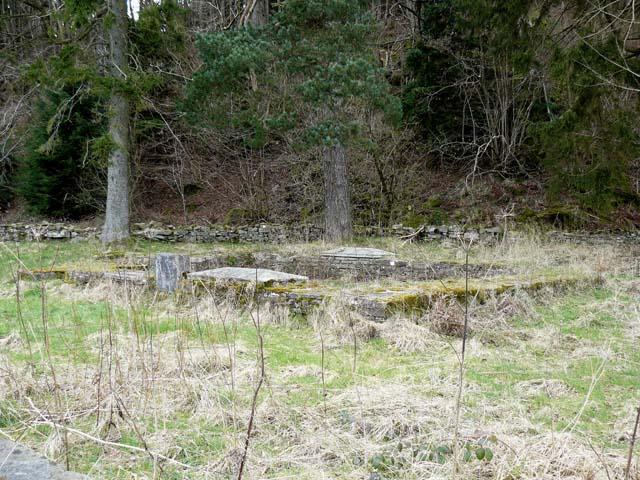 Chapel ruins, Abercynafon