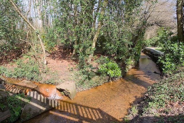 Stream beneath Palmer's Bridge, West Wellow