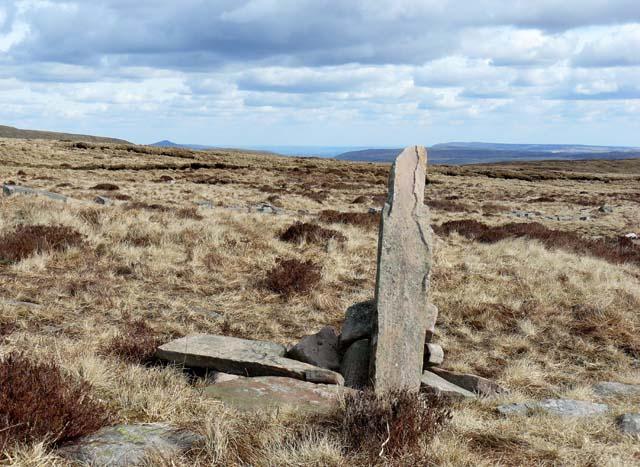 Marker post along the Beacons Way