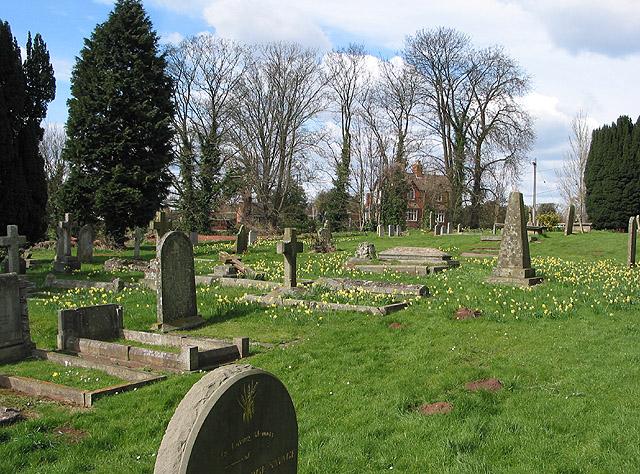 The churchyard at daffodil time