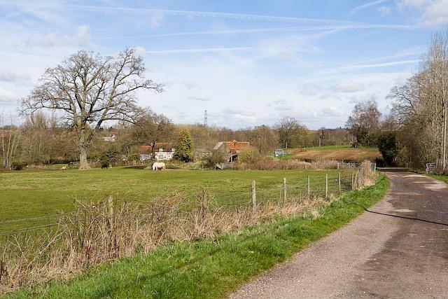 Approaching Pottery Farm along track beyond School Road, West Wellow