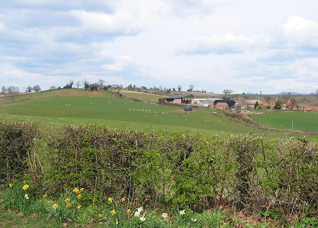 Holder's Farm