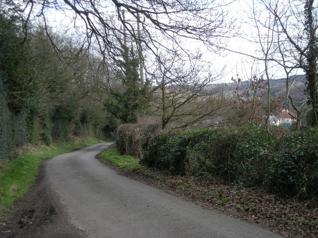 Down the lane to Sunniside