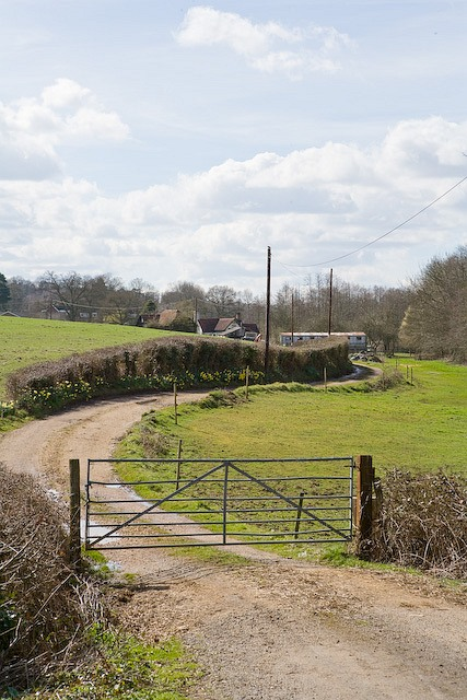 Drive to Pottery Farm from Romsey Road, West Wellow