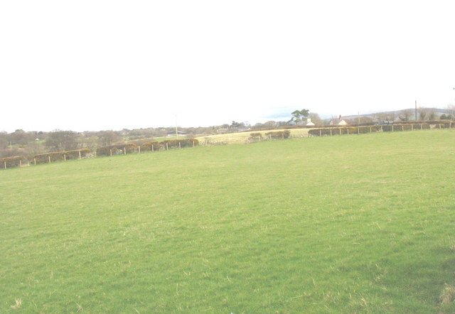 Fields east of the driveway to Collfryn