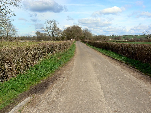 Road from Castle Cary to North Barrow
