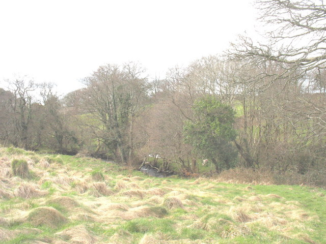 Rough grazing on a river terrace above Afon Carrog