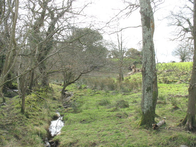 Floodplain and river terrace on the north bank of Afon Carrog
