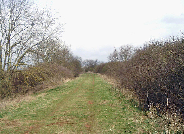 Course of former railway south of Somersham