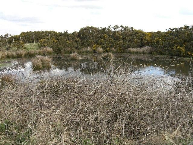 Burnthouse pond