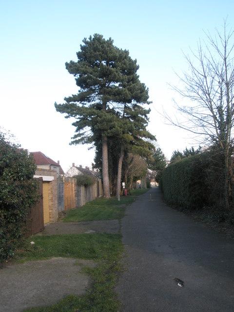 Path at northern edge of Drayton Park