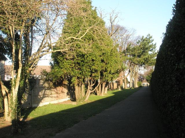 Pleasant walkway at Drayton Park