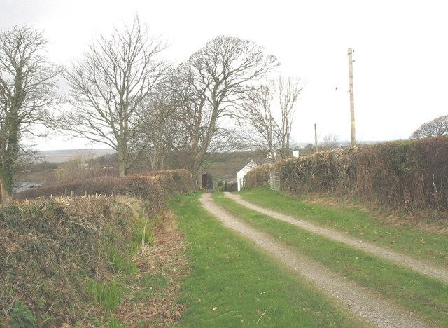 The driveway to Rhedynog Felen Fawr