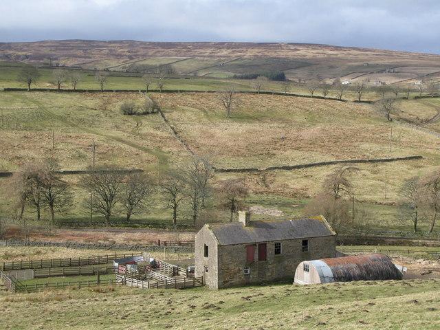 Barns and sheepfold near Peasmeadows