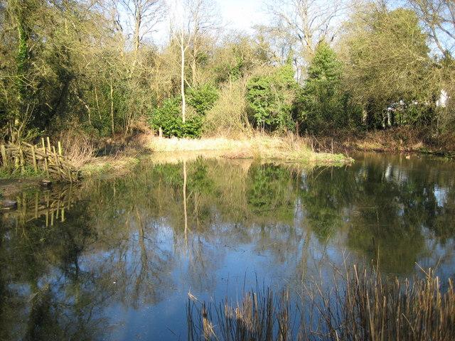 Chesham Bois: Bricky Pond