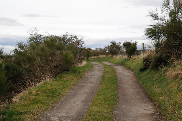 Track to Blairdams