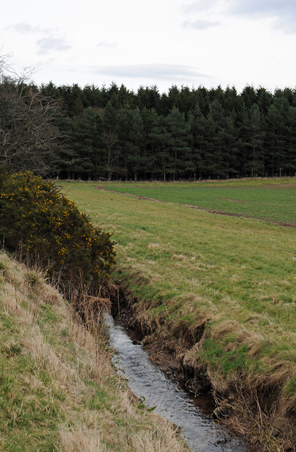 Unnamed Burn and Farmland