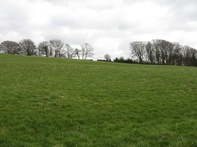 Field on Banks Hill