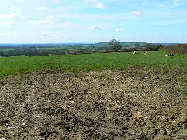 Farmland near Westcombe