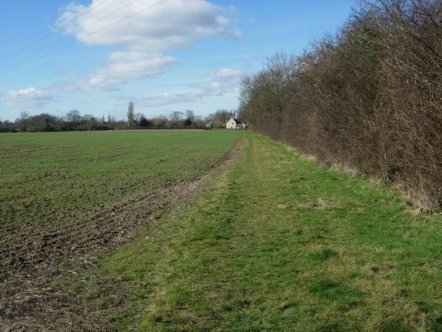 Rowans Field