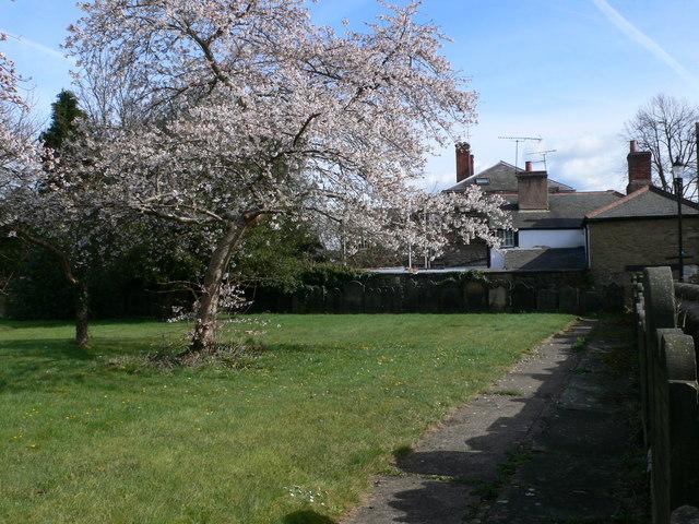 Garden of Rest, Ruabon