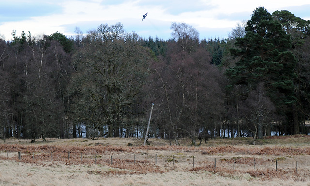 Low Flying Fighter over Pitcairnie Loch