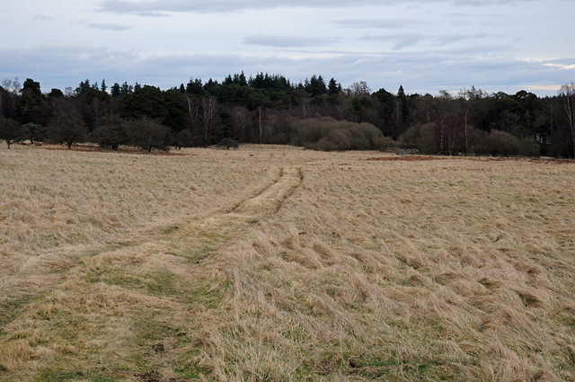 Track to Pitcairnie Loch over Blairbell Moor