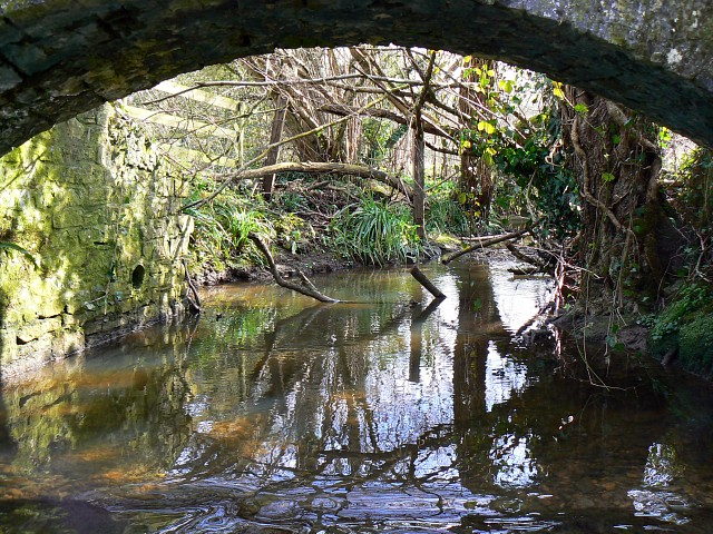 View from a ford, near East Pennard