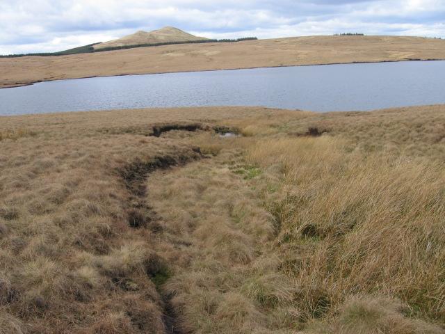 Across Birkenburn Reservoir towards Meikle Bin