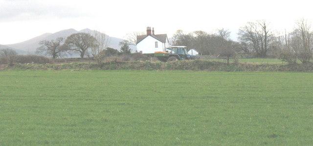 Gwylfa Stud Farm seen across the fields