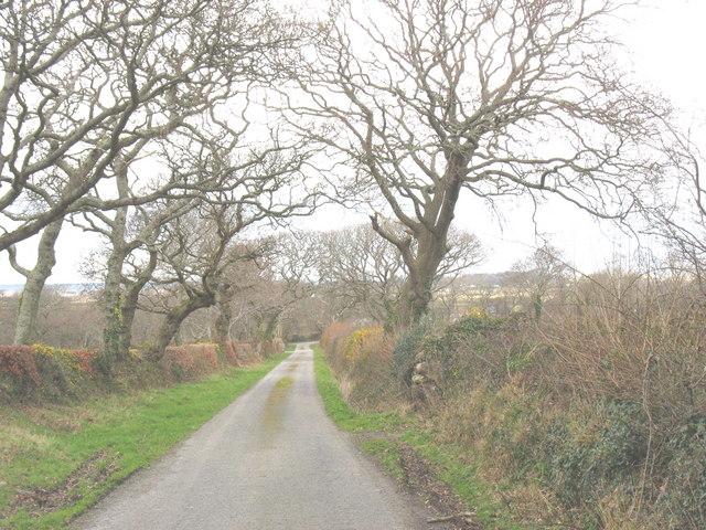 Stretch of road between Rhedynog Felen Bach and Dinas-y-prif