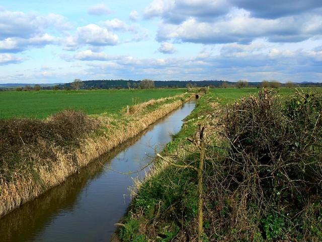 Rhyne, near Butleigh Wootton