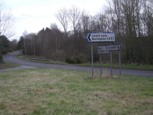 Junction at Lizard Lane