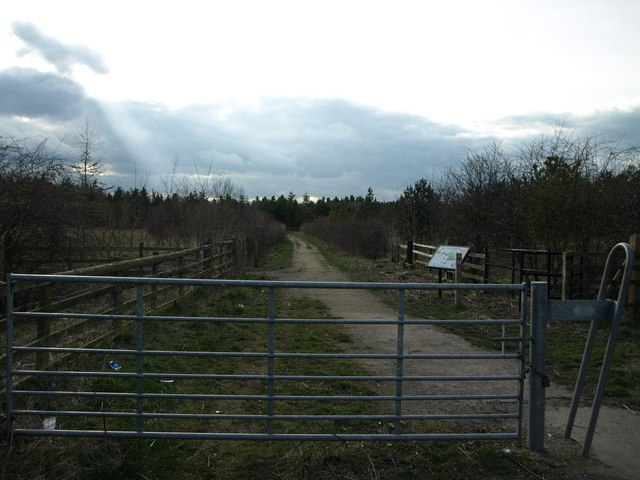 Entrance to Choppington Woods