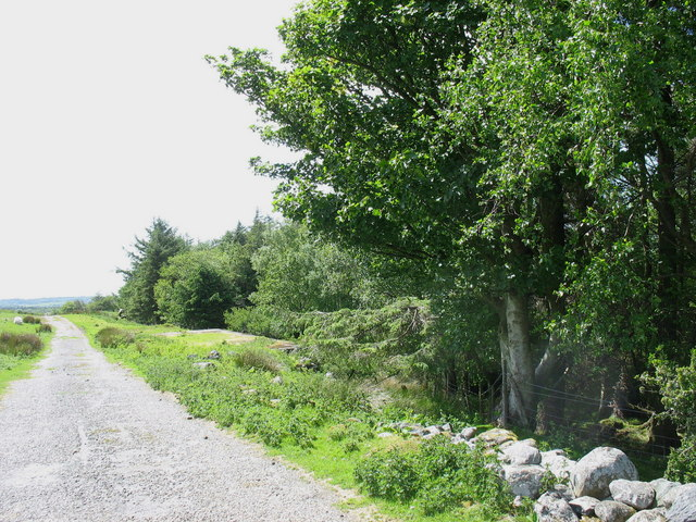 Old Air Ministry road at  the southern end of Coed Rhiwlas