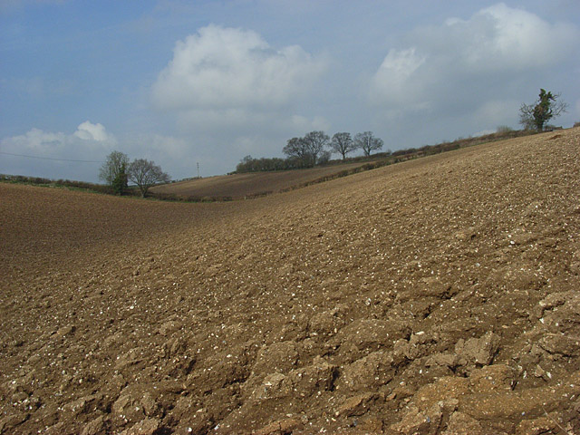 Farmland, Little Marlow
