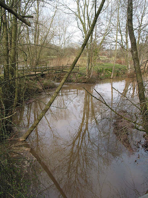 Pond near The Paddocks