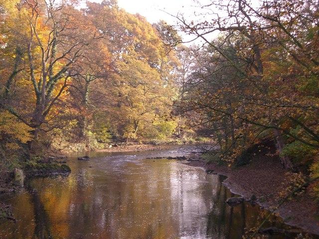 River Goyt in Woodbank Park