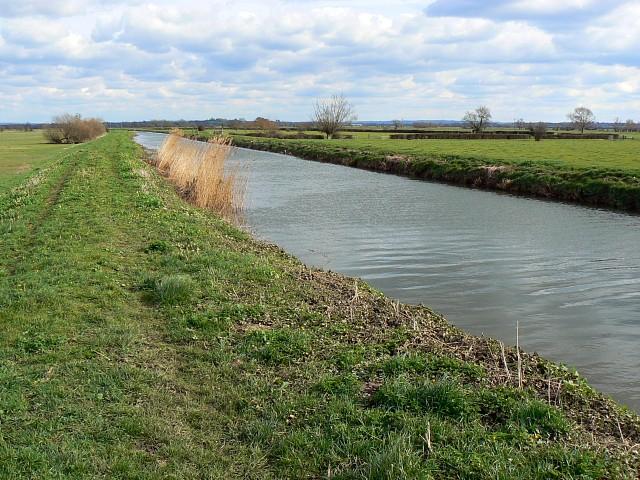 River Brue near Cow Bridge, south of Glastonbury