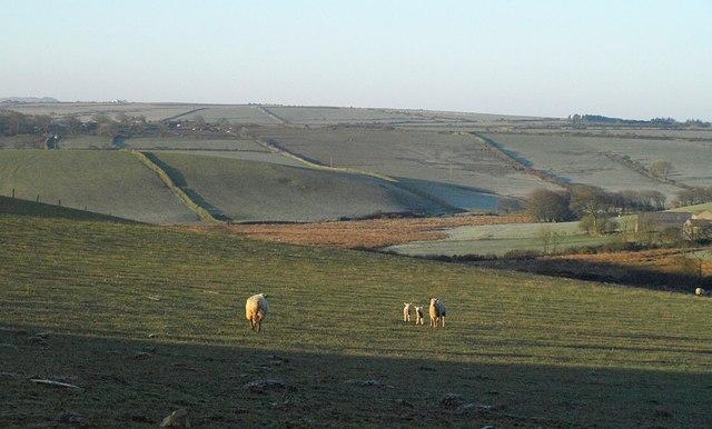 Inny valley at Lambrenny