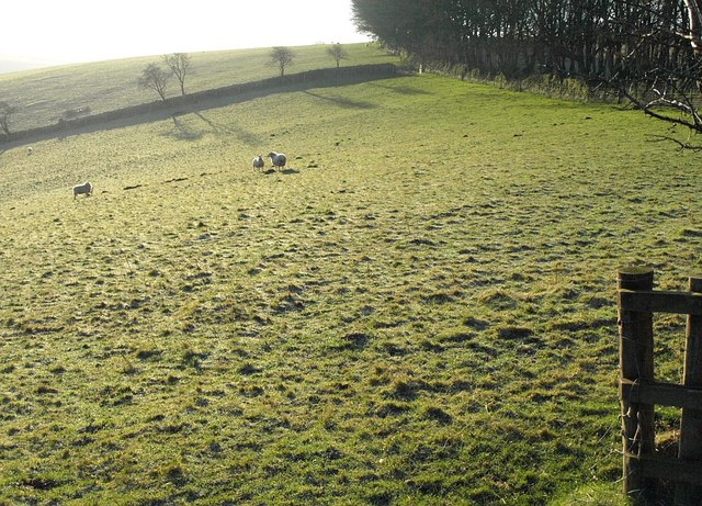 Field above the Inny