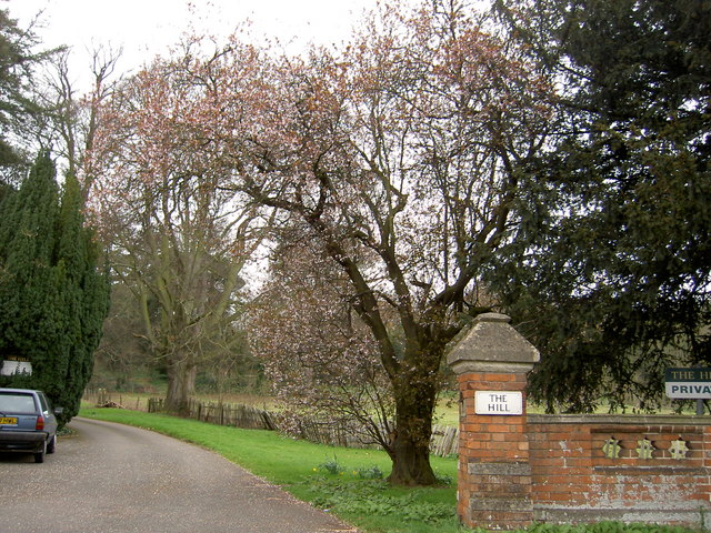 Private entrance to The Hill