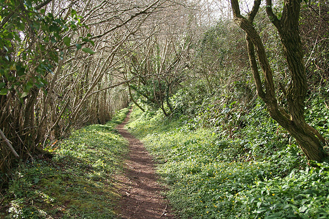 Cornworthy: footpath to East Cornworthy