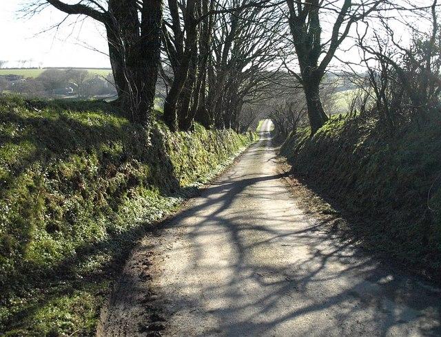 Lane at Trevivian