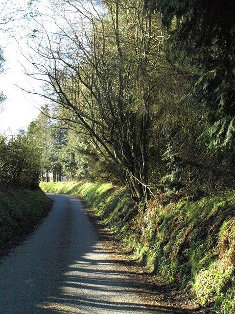Lane near Trewinnow